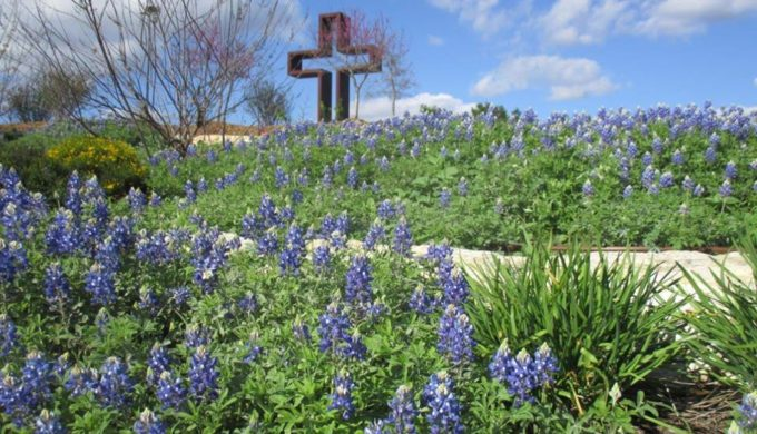 Nature, Culture, and Dining: 3 Reasons to Lose Your Heart to Kerrville